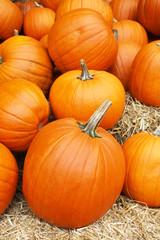 A collection of orange pumpkins lie on straw at an autumn market in Switzerland