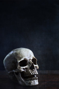 Halloween human skull in front of black background with space for text.