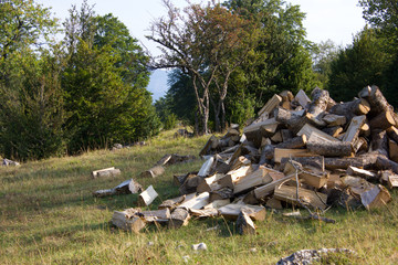 Logs at a meadow, landscape Vercors french pre Alps