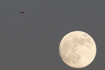 A war jet flies in the sky with the moon seen in the background above the Syrian side of the Israeli Syrian border as it is seen from the Israeli-occupied Golan Heights, Israel