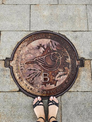 Girl's feet stand on sewer manhole on Vorobyovy Gory. Bird on hatch is a sparrow - symbol of place
