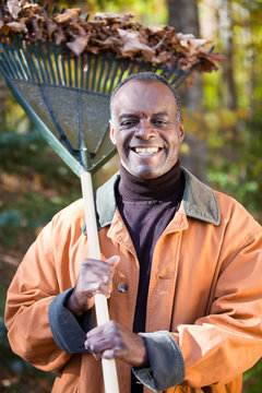Happy Senior African American Man Raking Leaves