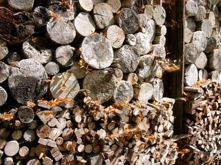 Gestapeltes Brennholz Für Den Kamin Im Herbst Mit Herbstlaub Auf Einem  Bauernhof In Rudersau Bei Rottenbuch