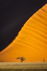 Sossusvlei, Namib-Naukluft National Park, Namibia, Africa. Giant sand dunes.
