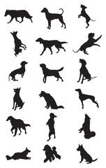 Vector dogs breeds silhouettes