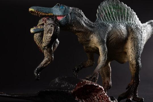 spinosaurus biting a dinosaur body on dark background close up