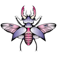 Pastel stag beetle drawing