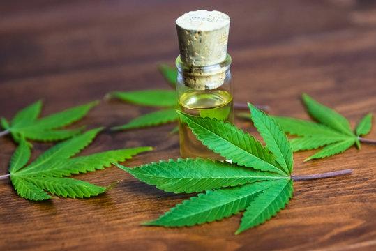 Marijuana fan leafs & THC/CBD infused oil on wood