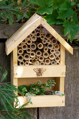 Insect hotel or house in a garden environment with bumblebee