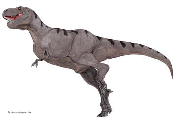 ティラノサウルス・レックス。白亜紀の大型の肉食恐竜で恐竜の代名詞的な存在。単色系で濃淡によりやや体色に変化をつけたイラスト画像です。