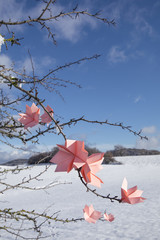 Origami flowers on twigs in winter
