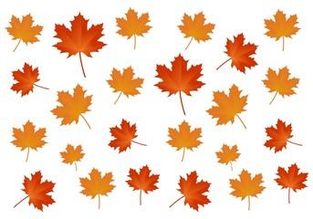 Maple, Autumn Leaf Background Logo