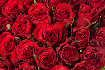 roses top view bouquet background closeup