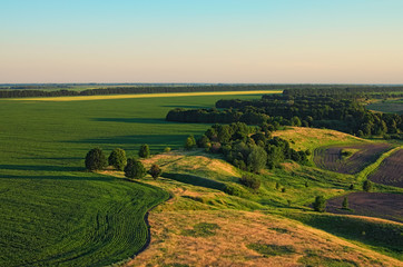 Aerial view over the agricultural fields on a sunny summer day. Kyiv region, Ukraine