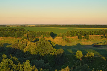 Aerial view over the agricultural fields and rows of trees on a sunny summer day. Kyiv region, Ukraine