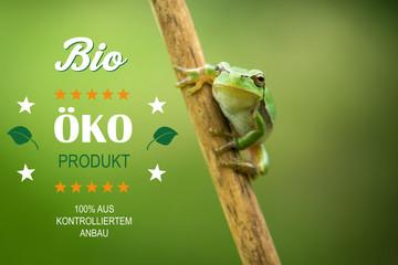 Frosch Bio Ökoprodukt Landwirtschaft