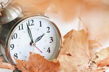 Alarm clock in fallen autumn leaves with shallow depth of field. Daylight savings time concept with clock hands at almost 2 am.