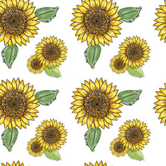 Sunflower vector seamless pattern with green leaves, imitating ink and watercolor on white background. Hand-drawn flower heads. Natural themed wallpaper, wrapping, packaging paper,birthday card design