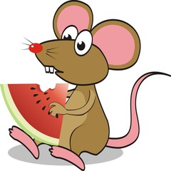 Cute mouse eating watermelon. vector illustration