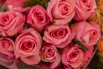 Tight bouquet of pink roses