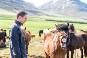 Young happy man standing, watching many Icelandic horses in outdoor stable paddock, Iceland in countryside rural farm, mountains, making funny faces, showing teeth, open mouth