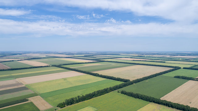 Aerial view of fields with various types of agriculture, against cloudy sky