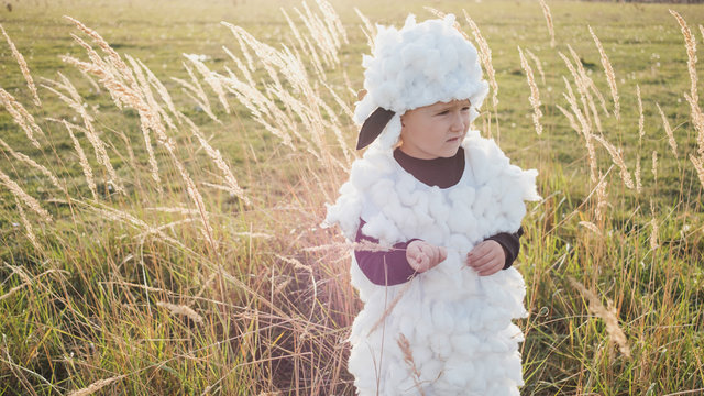 Little Boy In The Sheep Costume Standing In The Field