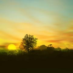 3D illustration. Beautiful landscape during sunset.