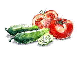 Vegetable set with tomatoes and cucumbers. Hand drawn watercolor painting on white background.