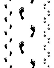 Prints of feet and paws on a white background, seamless
