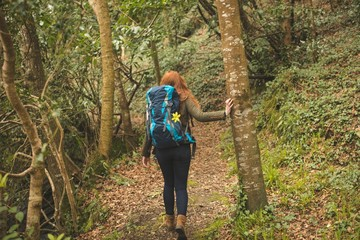 Female hiker with backpack hiking in the forest