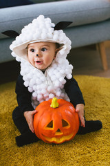 Baby boy dressed up as a little sheep for halloween.