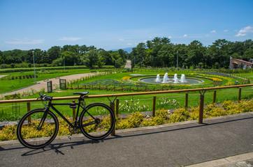大阪・服部緑地の円形花壇と自転車