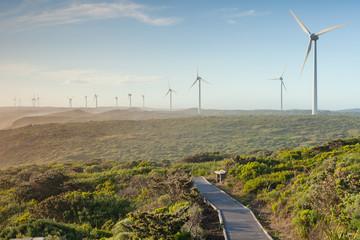 Massive Wind Power Turbines On Coast