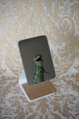 Tyrannosaurus in a mirror