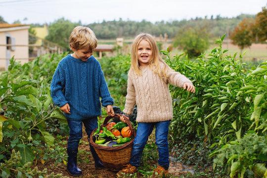 Kids on orchard holding a basket of fresh vegetables.