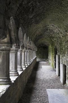 Sligo Abbey (Mainistir Shligigh), Sligo, Republic of Ireland