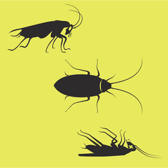 home and office pests cockroaches black art on yellow background dead and aliave side top views