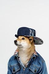 Mister Rapper