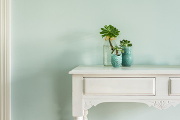 hall table with succulents