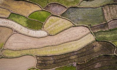 Aerial photography bird-eye view of farm farmland nature landsca