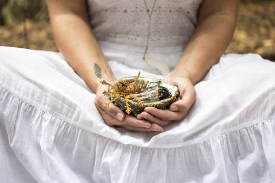 hands holding shell filled with sage and cedar