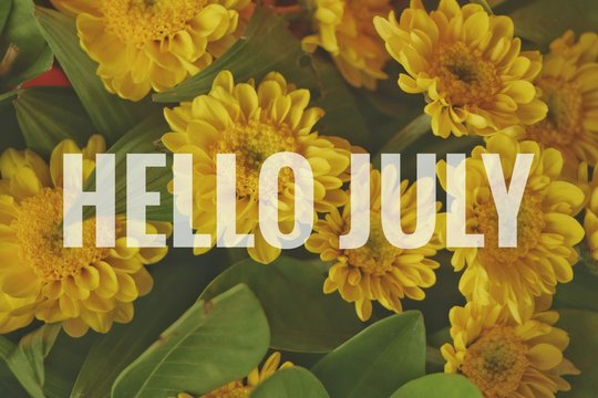 Text Hello July on yellow flowers background.