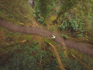 Man cycling in the forest Wall mural
