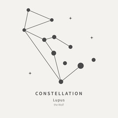 The Constellation Of Lupus. The Wolf - linear icon. Vector illustration of the concept of astronomy.