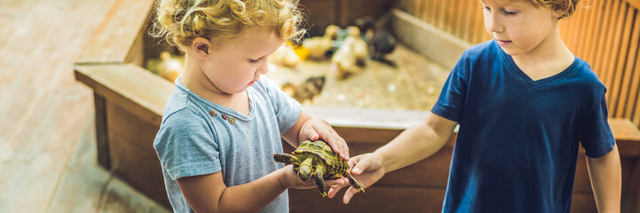 toddlers boy and girl caresses and playing with turtle in the petting zoo. concept of sustainability, love of nature, respect for the world and love for animals. BANNER, long format