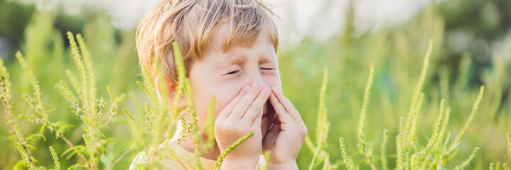 Boy sneezes because of an allergy to ragweed BANNER, long format