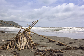 Typical of New Zealand is the many driftwood on the beaches