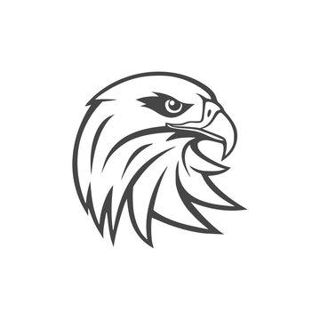 Eagle mascot logo for sport team, Eagle head icon