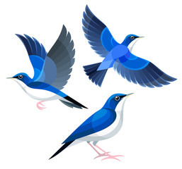 Stylized Birds - Siberian Blue Robin